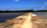 Radiance Solar Wins Bid as Key Contractor on South GA Solar Plant